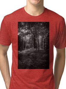 Lazy Walks Tri-blend T-Shirt