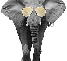 Sunny Elephant by jimmydeewon