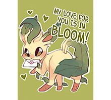 Leafeon Love Photographic Print
