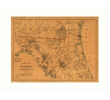 Vintage Map of Northern Florida (1864) Art Print