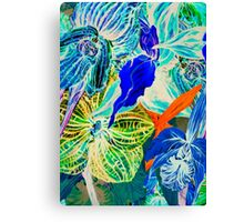 Blue orchid. Canvas Print