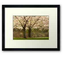 Blossom Dell_1 Framed Print