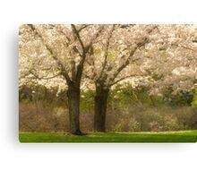 Blossom Dell_1 Canvas Print