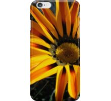 Gazania 11 iPhone Case/Skin