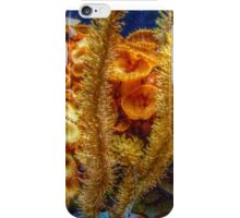 Lost In The Golden Coral iPhone Case/Skin