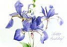 Pretty Blue Irises Birthday Card by LouiseK