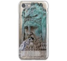 Lion Fountain iPhone Case/Skin