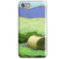Round Bales in Montana iPhone Case/Skin
