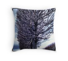 Kilmainham Forestry Throw Pillow