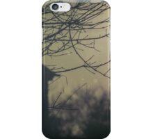 Hidden Place iPhone Case/Skin