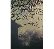Hidden Place Photographic Print