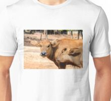Young buffalo calves playing in Thailand Unisex T-Shirt