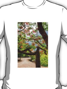 Royal Poinciana or flame tree blossom in Thailand T-Shirt