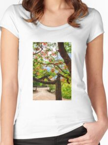 Royal Poinciana or flame tree blossom in Thailand Women's Fitted Scoop T-Shirt