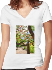 Royal Poinciana or flame tree blossom in Thailand Women's Fitted V-Neck T-Shirt