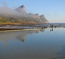 Tidal pool at the Cape of Good Hope by Lee Jones