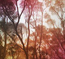 Hazy by Kitsmumma