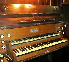 A Very Old Pipe Organ by BlueMoonRose