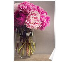 Pink Peony in a vase Poster