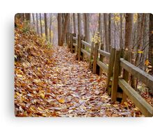 Leaf Lined Path.....  ^ Canvas Print