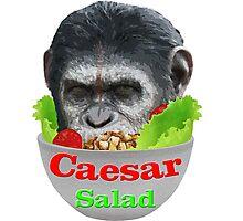 Caesar Salad Photographic Print