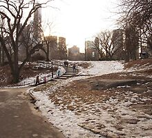 NY Central Park Nr 1 by silvianeto