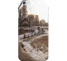 NY Central Park Nr 1 iPhone Case/Skin