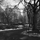 Black White NY Central Park Nr 2 by silvianeto