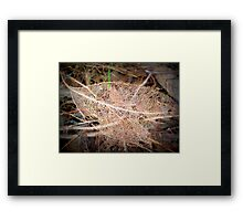 A Skeleton In The Undergrowth Framed Print