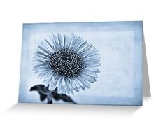 Cyanotype Aster with Textures Greeting Card