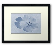 Linen Watercolour Cyanotype Framed Print