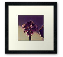 California Palm Cinema K1 Framed Print
