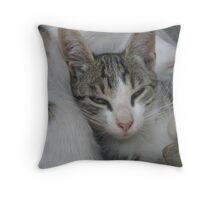 A soft pillow_Martinove mace Throw Pillow