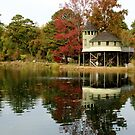 the Treehouse at fall by ANNABEL   S. ALENTON