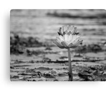 Inseparable (B & W)  Canvas Print