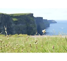 The Cliffs Photographic Print