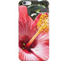 Hibiscus Love iPhone Case/Skin