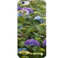 Lost Among The Hydrangeas iPhone Case/Skin