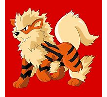 Pokemon Go Arcanine (T-Shirts, Phone cases and more) Photographic Print