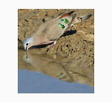 Emerald Spotted Dove - African Wild Bird Background - Reflection of Green and Blue Unisex T-Shirt