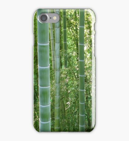 Bamboo grove, bamboo forest natural green background, Georgia, Batumi Botanical Garden iPhone Case/Skin