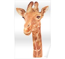 Watercolor Portrait of Giraffe Poster