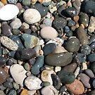 A close up view of smooth polished multicolored stones washed ashore on the beach. by OlgaBerlet