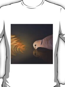 Cape Turtle Dove - African Wild Bird Background - Drinking Gold T-Shirt