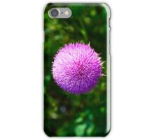 Pink Thistle Study 2  iPhone Case/Skin
