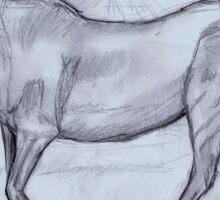 Horse sketch Sticker