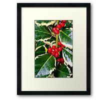 Holly Berries Framed Print