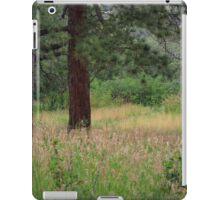 Peaceful meadow of tall grass iPad Case/Skin