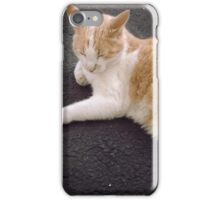 Sleepy cat iPhone Case/Skin