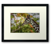 Advice from a giraffe Framed Print